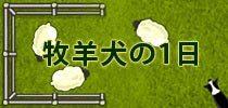牧羊犬の1日